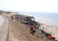 آغاز عملیات پاکسازی سواحل جزیره قشم از آلودگی ترکیبات نفتی