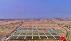 جزیره قشم، پل دستیابی به خودکفایی صنایع شیلاتی کشور