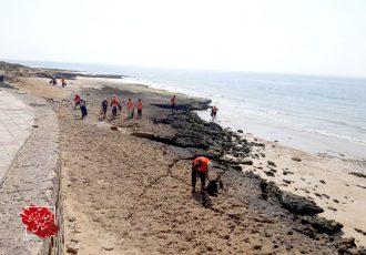 مشارکت سازمان منطقه آزاد قشم در محافظت از محیط زیست دریایی