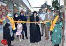 افتتاح نمایشگاه صنایع و هنرهای دستی در منطقه آزاد اروند